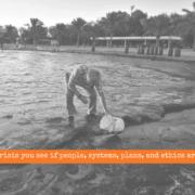 crisis-management-failure-athens-riviera-oil-spill